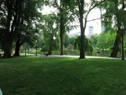 boston common kopya